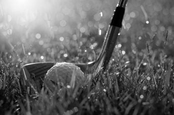 Golf Ball in the rain