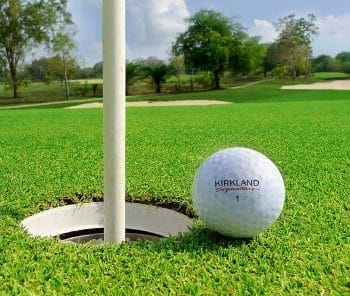 Kirkland Signature Golf Ball next to hole